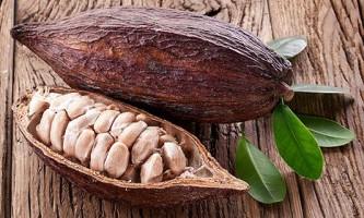 Какао омолоджує нервову тканину