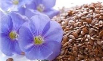 Насіння льону для схуднення